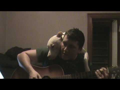 VIDEO: Kā suns reaģēja, klausoties dziesmu par sevi!? (Pit Bull Cuddles Owner While Listening To A Beautiful Song.)