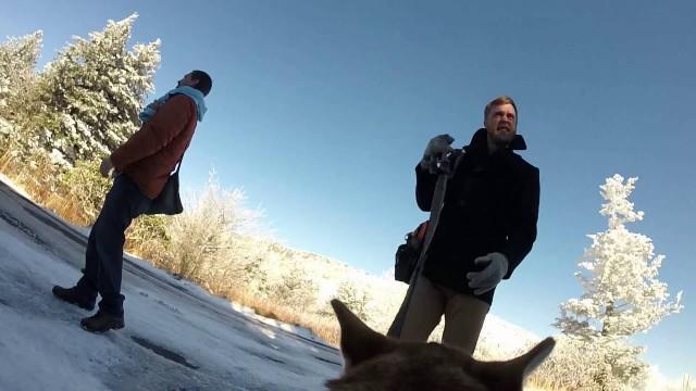 VIDEO: Neierasti un ļoti radoši! Kā izskatās pāra kāzu diena no suņa skatu punkta!