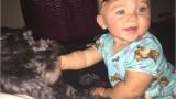 VIDEO: Suns Polo izglāba zīdaini ugunsgrēka laikā, uzguldamies viņai virsū, sargājot no liesmām.. Pats neizdzīvoja..