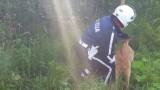 VIDEO: Kā Latvijas lielceļu policisti izglāba nožogojumā iesprūdušu stirnu!?