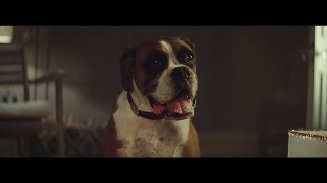 VIDEO: Ziemassvētku reklāma, ko 2 dienās noskatījušies 10 miljoni interneta lietotāju!