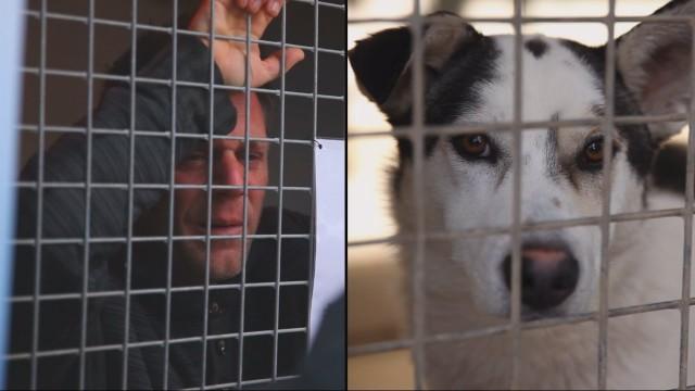 VIDEO: Slavens franču komiķis pavada 87 stundas dzīvnieku krātiņā un savāc 200 000 EUR!