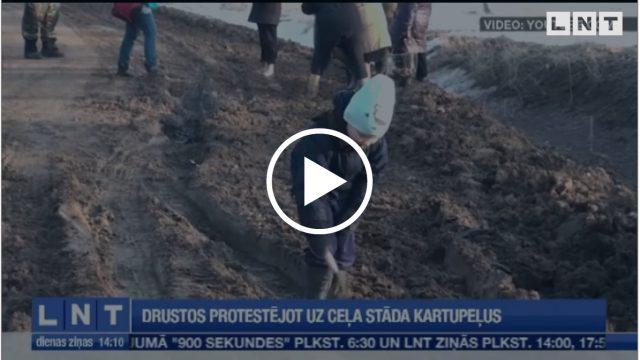 VIDEO: Drustu iedzīvotāji Latvijas autoceļiem atraduši jaunu pielietojumu – jāstāda KARTUPEĻI!