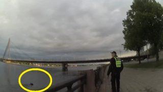 VIDEO: Daugavā pie Vanšu tilta par dzīvību izmisīgi cīnās alnis! Policisti un glābēji steidzas palīgā!