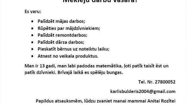 Sirsnīgs 13 gadus veca puiša darba meklēšanas sludinājums soctīklos sajūsmina visu Latviju!