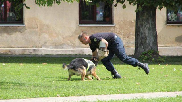 FOTO: Valsts policijas dienesta suns Darvins uziet prāvu nelegālo cigarešu daudzumu!