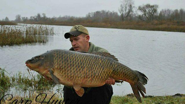 FOTO: Iespaidīgi! Latvijā noķerta patiesi milzīga 23 kg smaga karpa!