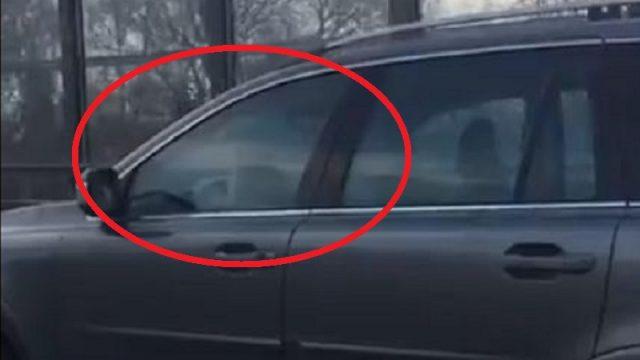 """VIDEO: Aculiecinieks Rīgā pamanījis kādu suni, kurš visai pārliecinoši """"stūrē"""" auto!"""