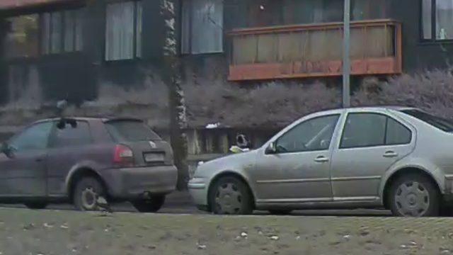 """VIDEO: Policisti nozieguma vietā pieķer labi """"organizētu bandu""""!"""